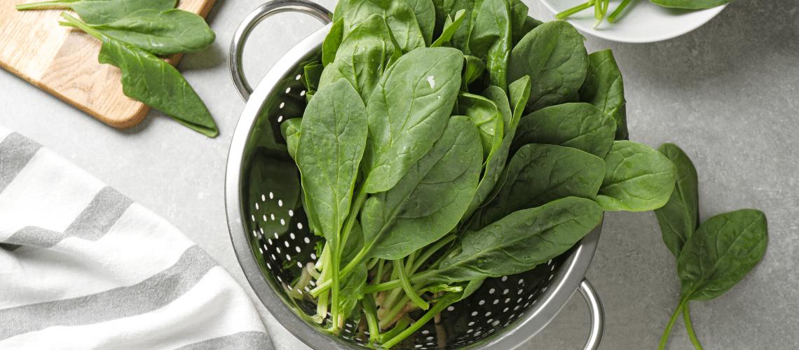 Imagem de salada de folha - CALCIO SEM USAR LACTICINIOS