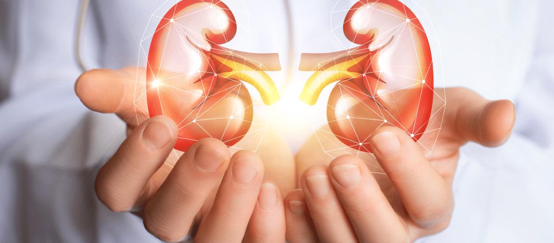 Transplante renal
