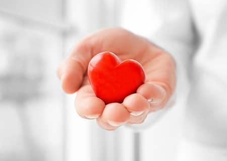 Mão segurando coração de borracha