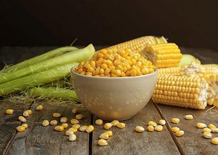 Mesa com milhos em espigas e milhos em tigela